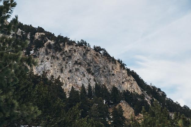 Góry zima landskape, kamień i drzewa