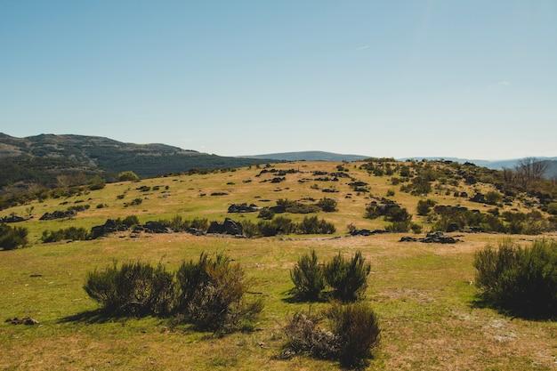 Górzyste krajobrazy