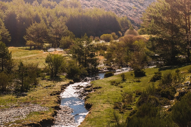 Górzysty krajobraz z małej rzeki