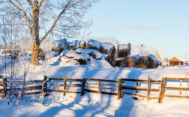 Gospodarstwo ze stodołą, koniami i belami