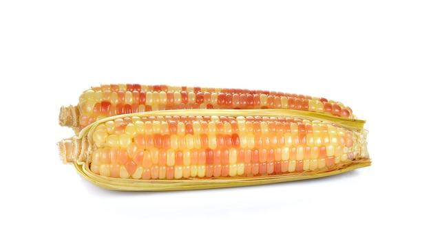 Gotowana kukurydza na białym tle