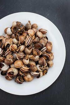 Gotowane ślimaki na białym talerzu na ceramicznym tle