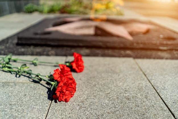 Goździki w pobliżu pomnika wiecznego płomienia poświęconego drugiej wojnie światowej