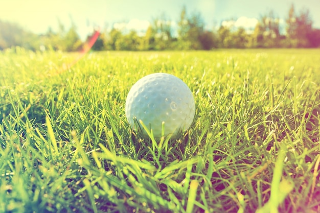 Gra w golfa.