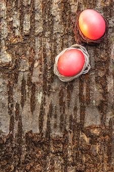 Gradientowe jajka malowane na wielkanoc