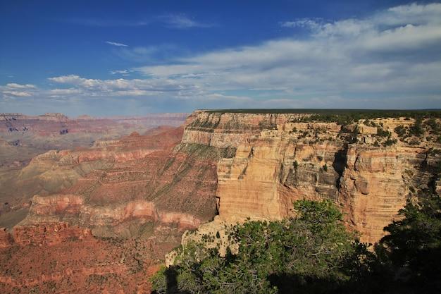 Grand canyon w arizonie