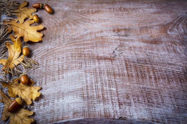 Granica owsa, żołądź i spadek liści na starym drewnianym
