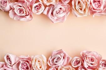 Granica piękna świeża słodka róża różowy na białym tle na beżowym tle
