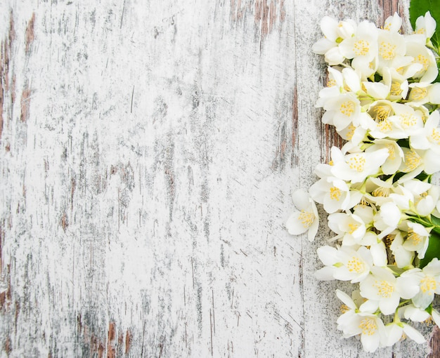 Granica z kwiatami jaśminu