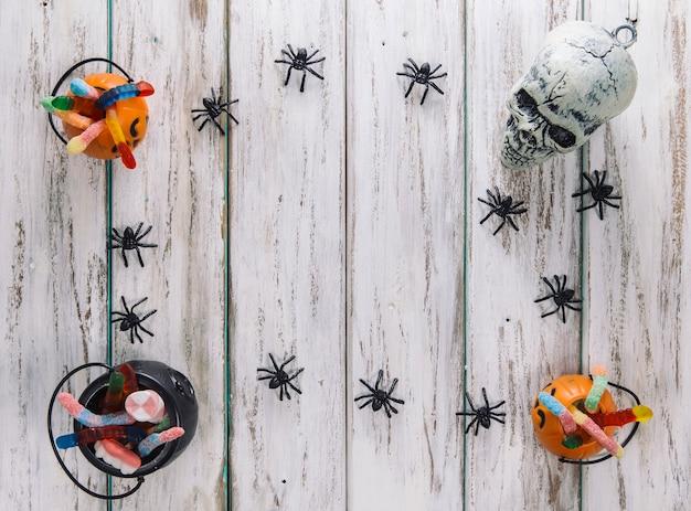 Granica z pająków i kosze