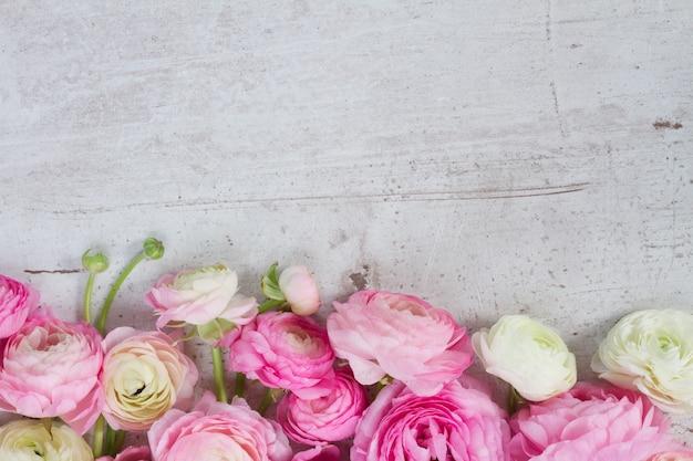 Granicy różowe i białe kwiaty jaskier na białym drewnianym pulpicie wieku
