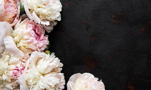 Granicy świeże różowe kwiaty piwonii z miejsca kopiowania na czarno