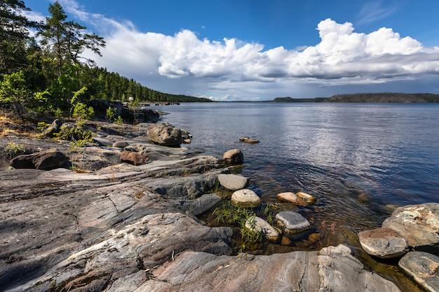 Granitowe skaliste wybrzeże i las sosnowy. krajobraz europy północnej