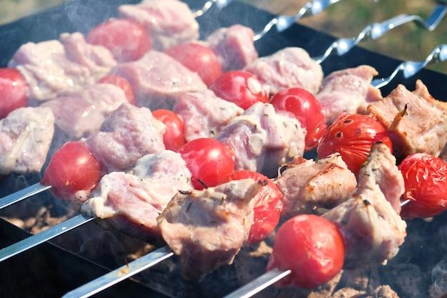 Grill szpikulec z mięsem i warzywami w przyrodzie