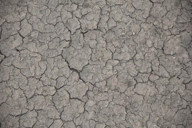 Grunt o suchej i popękanej ziemi. globalne ocieplenie w tle.