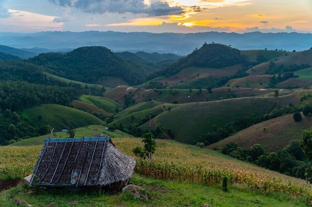 Grunty rolne na wzgórzach z drewnianym domkiem i pochmurno w zielonym sezonie prowincji mae hong son w północnej tajlandii.