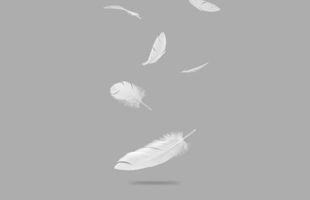 Grupa białych, lekkich ptasich piór spadających w powietrze.