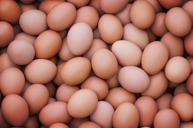 Grupa dobrej jakości jaj kurzych