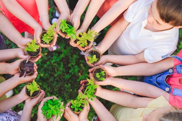 Grupa dzieci trzymających rośliny w doniczkach
