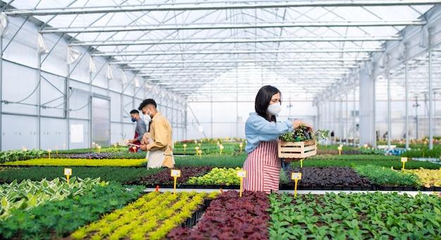 Grupa ludzi pracujących w szklarni w centrum ogrodniczym, koncepcja koronawirusa.