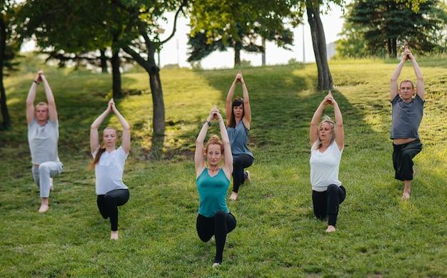 Grupa ludzi uprawia jogę w parku o zachodzie słońca. zdrowy styl życia, medytacja i dobre samopoczucie.