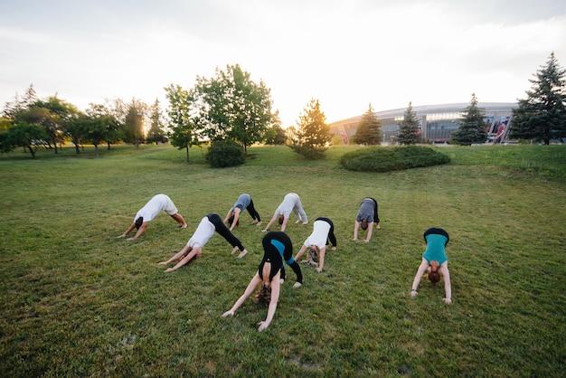 Grupa ludzi uprawia jogę w parku o zachodzie słońca.