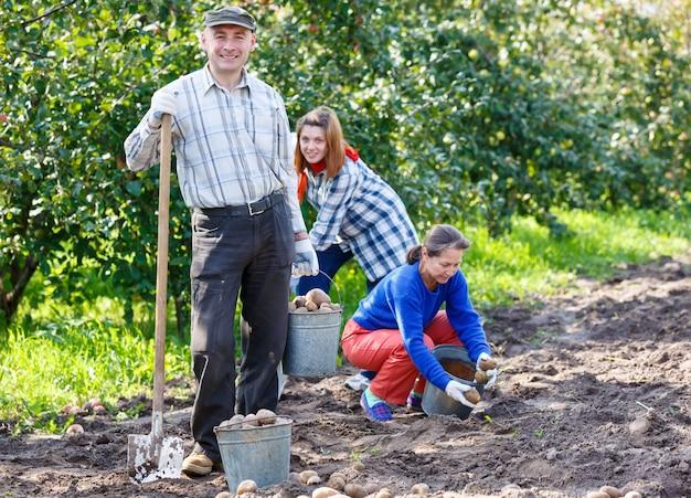 Grupa ludzi w ogrodzie z łyżką łopatą sadzenia ziemniaków