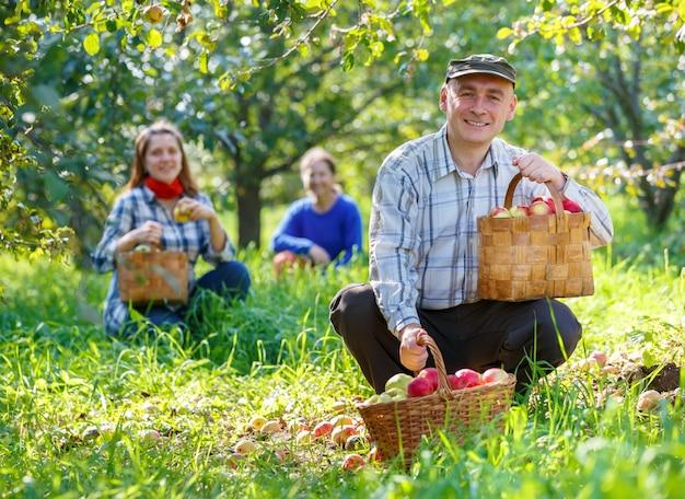 Grupa ludzi zbiera jabłka w ogrodzie