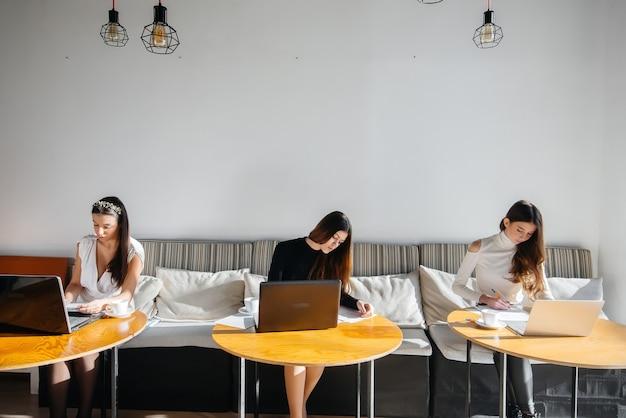 Grupa młodych dziewcząt siedzi w biurze przy komputerach i omawia projekty. komunikacja i szkolenia online.