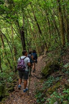 Grupa przyjaciół na szlaku trekkingowym w parku przyrody los tinos na północno-wschodnim wybrzeżu