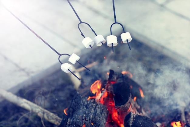 Grupa przyjaciół przygotowująca pianki na ognisku