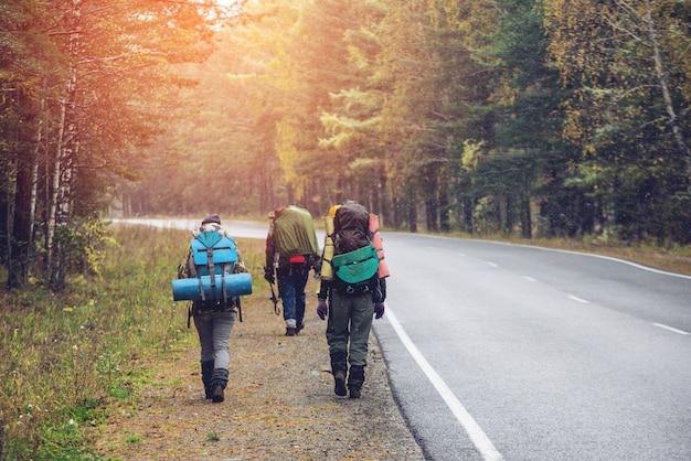 Grupa przyjaciół spaceru z plecakami przy leśnej drodze