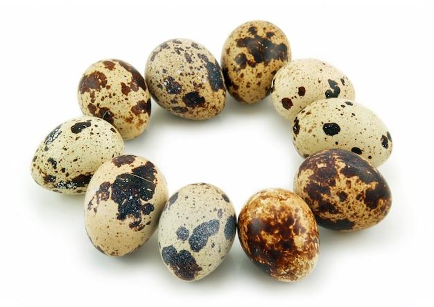 Grupa surowi przepiórek jajka odizolowywający na bielu
