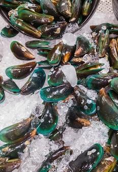 Grupa surowych małży na tacce na lód na sprzedaż rynku owoców morza w pobliżu morza, widok z przodu na tle.