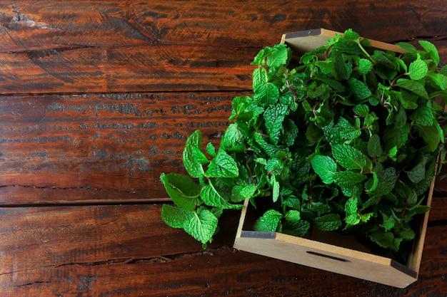Grupa zielona organicznie świeża mennica w koszu nad nieociosanym drewnianym biurkiem