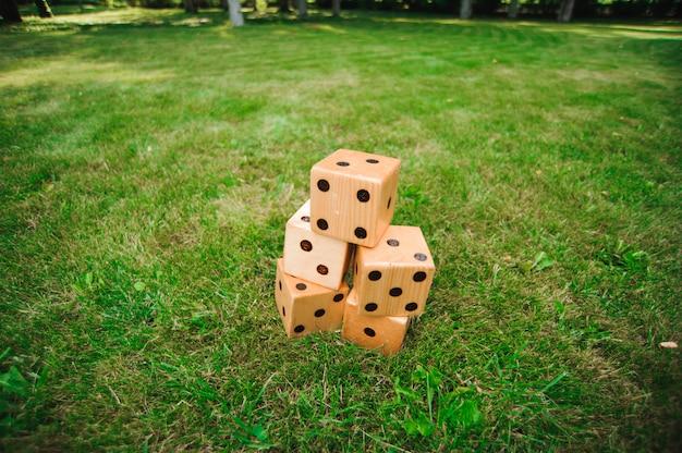 Gry na świeżym powietrzu, duże kości, gigantyczna gra na świeżym powietrzu na zielonej trawie
