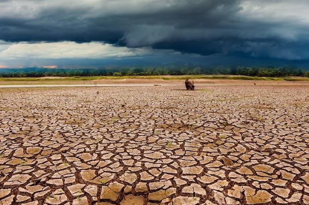 Grzmot burzy na niebie i pęknięty suchy ląd bez wody