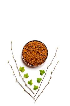 Grzyb chaga. kompozycja małych suchych kawałków chaga z drzewa brzozowego w okrągłej misce i gałązek brzozy i liści porzeczki na białym