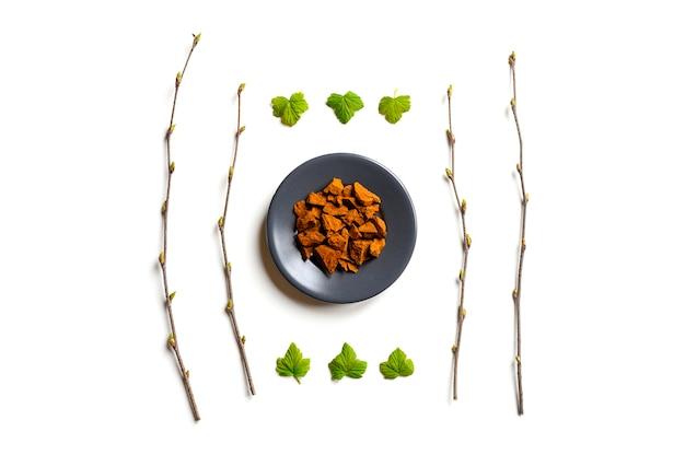 Grzyb chaga. kompozycja małych suchych kawałków chaga z drzewa brzozowego w okrągłym talerzu i gałązkach brzozy i liściach porzeczki na białym. koncepcja alternatywnej medycyny naturalnej