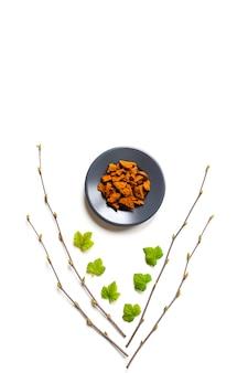 Grzyb chaga. kompozycja suchych kawałków chaga grzyb brzozowy na talerzu i gałązki brzozy i liści porzeczki na białym tle. koncepcja alternatywnej medycyny naturalnej.