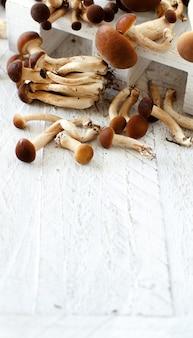 Grzyby agrocybe aegerita (pioppino) na drewnianym stole