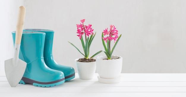 Gumowi buty i wiosna kwiaty na białym tle