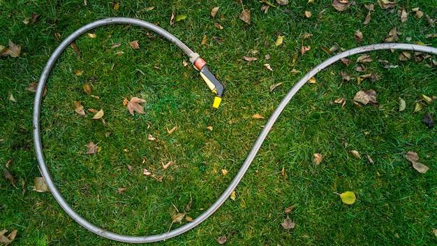 Gumowy wąż ogrodowy leżący na porośniętej liśćmi trawie