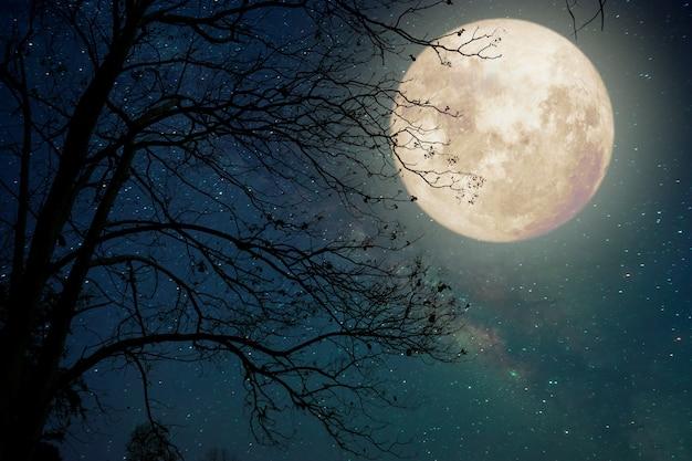 Gwiazda drogi mlecznej w nocnym niebie, księżyc w pełni i stare drzewo - grafika w stylu retro z rocznika kolorowego (elementy tego obrazu księżyca dostarczone przez nasa)