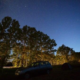 Gwiazdy na nocnym niebie nad autostradą w lesie