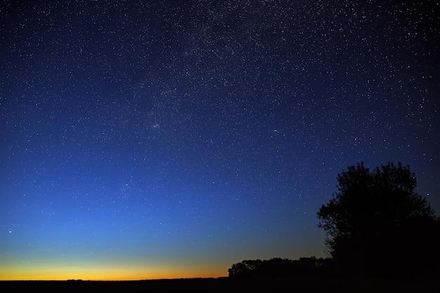 Gwiazdy na nocnym niebie. widok kosmosu o zmierzchu.