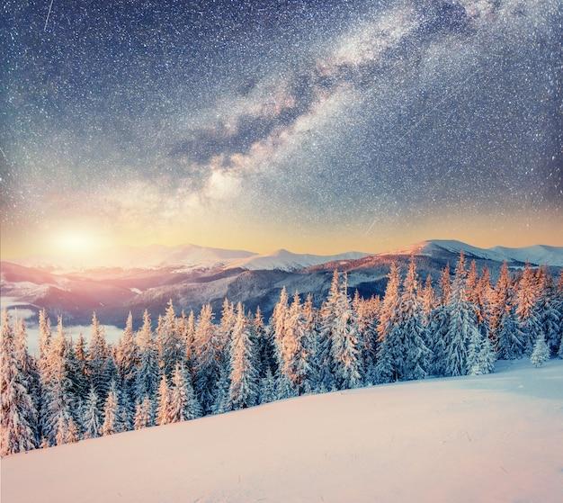 Gwiaździste niebo w zimową śnieżną noc. karpaty, ukraina, europa