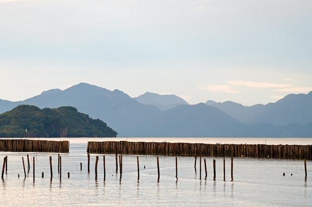 Haft bambusowy chroniący morskie fale.