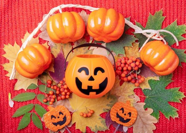 Halloween jack o lantern ze słodyczami na kolorowym jesiennym tle z suszonych liści i pomarańczowych jagód jarzębiny na dzianinowym czerwonym tle. jasna jesienna karta na święta halloween