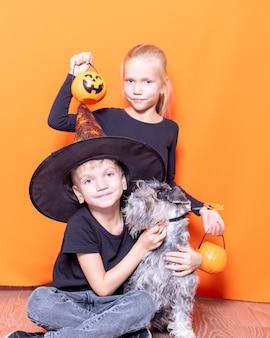 """Halloween rodzinne wakacje. dziewczynka trzymająca koszyk w kształcie dyni ze słodyczami oraz chłopiec w kapeluszu czarodzieja i pies na pomarańczowym tle. upiorna zabawa na halloween. tradycja """"cukierek albo psikus"""""""